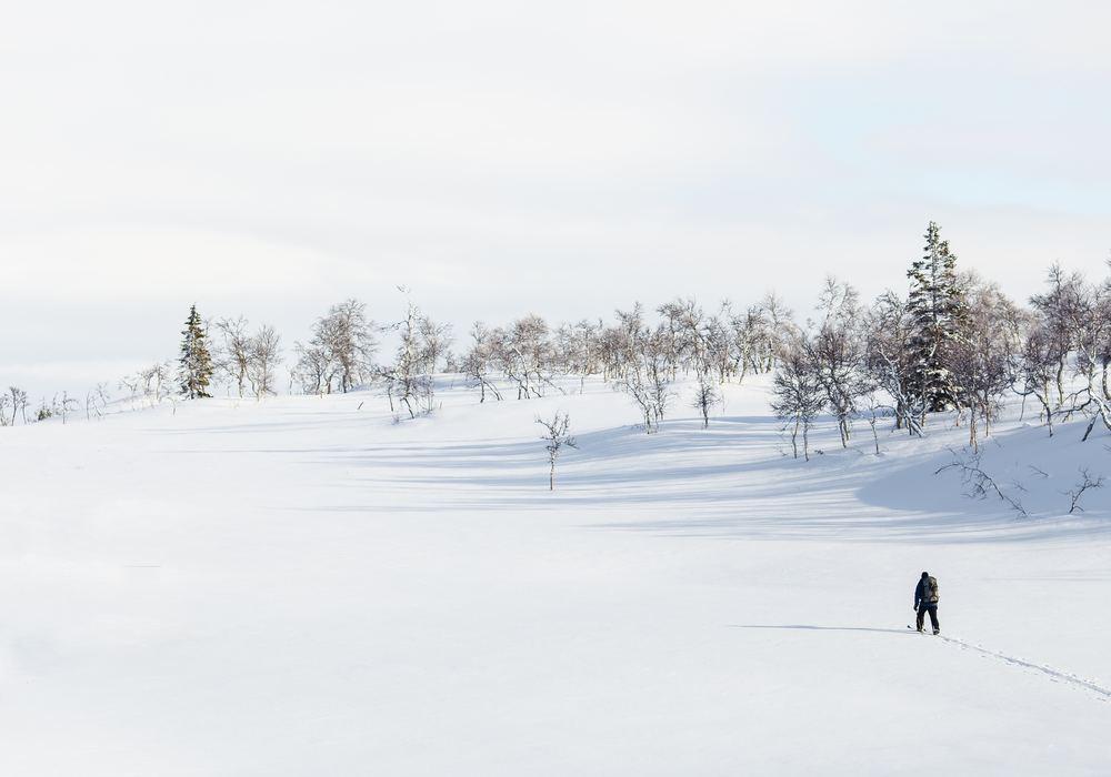 Fördjupa dig i det nordiska soundet